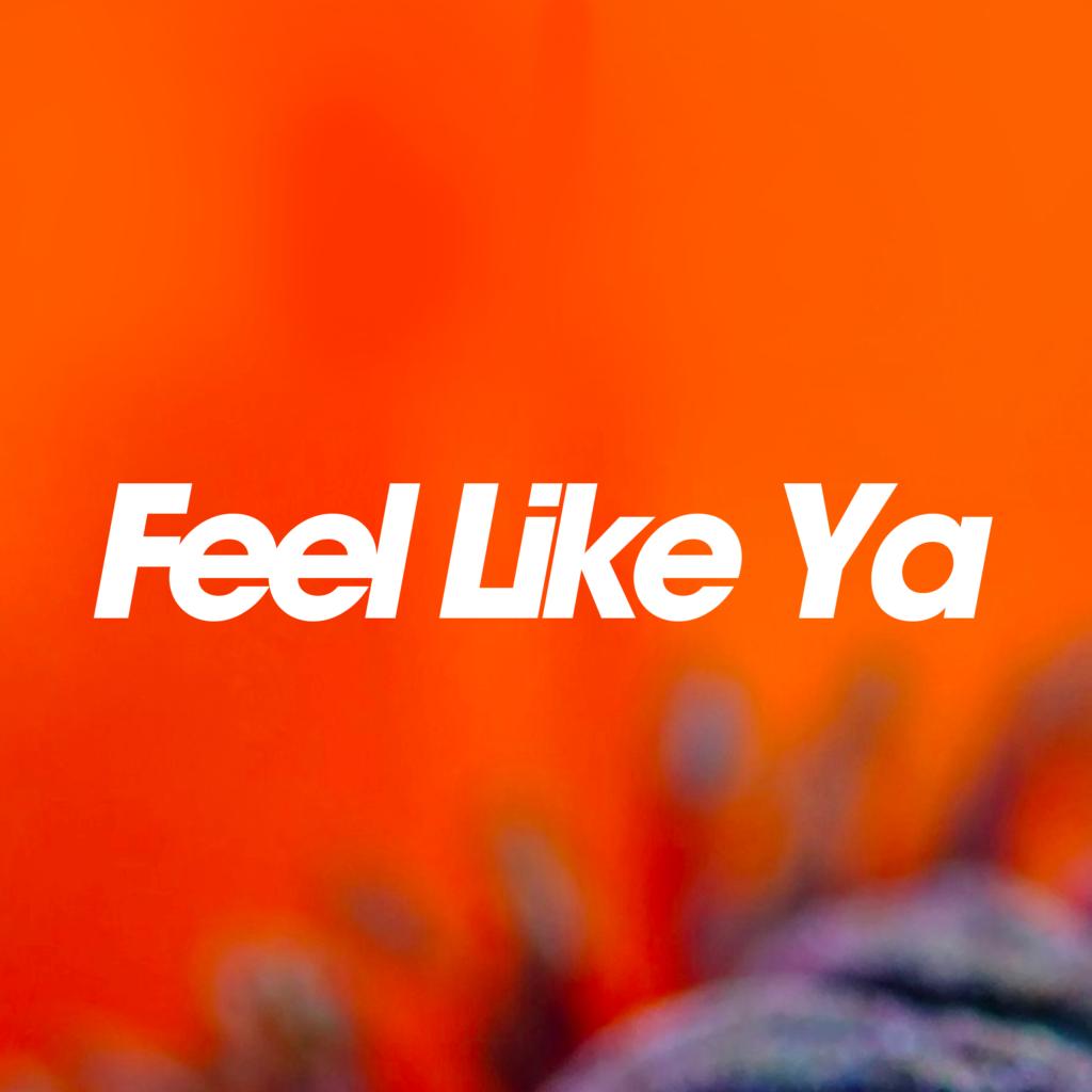 "Thousands of Poppies ""Feel like Ya"" (single)"