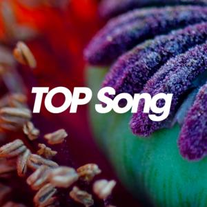 TOP Song